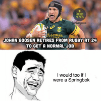 Funny springbok rugby pics